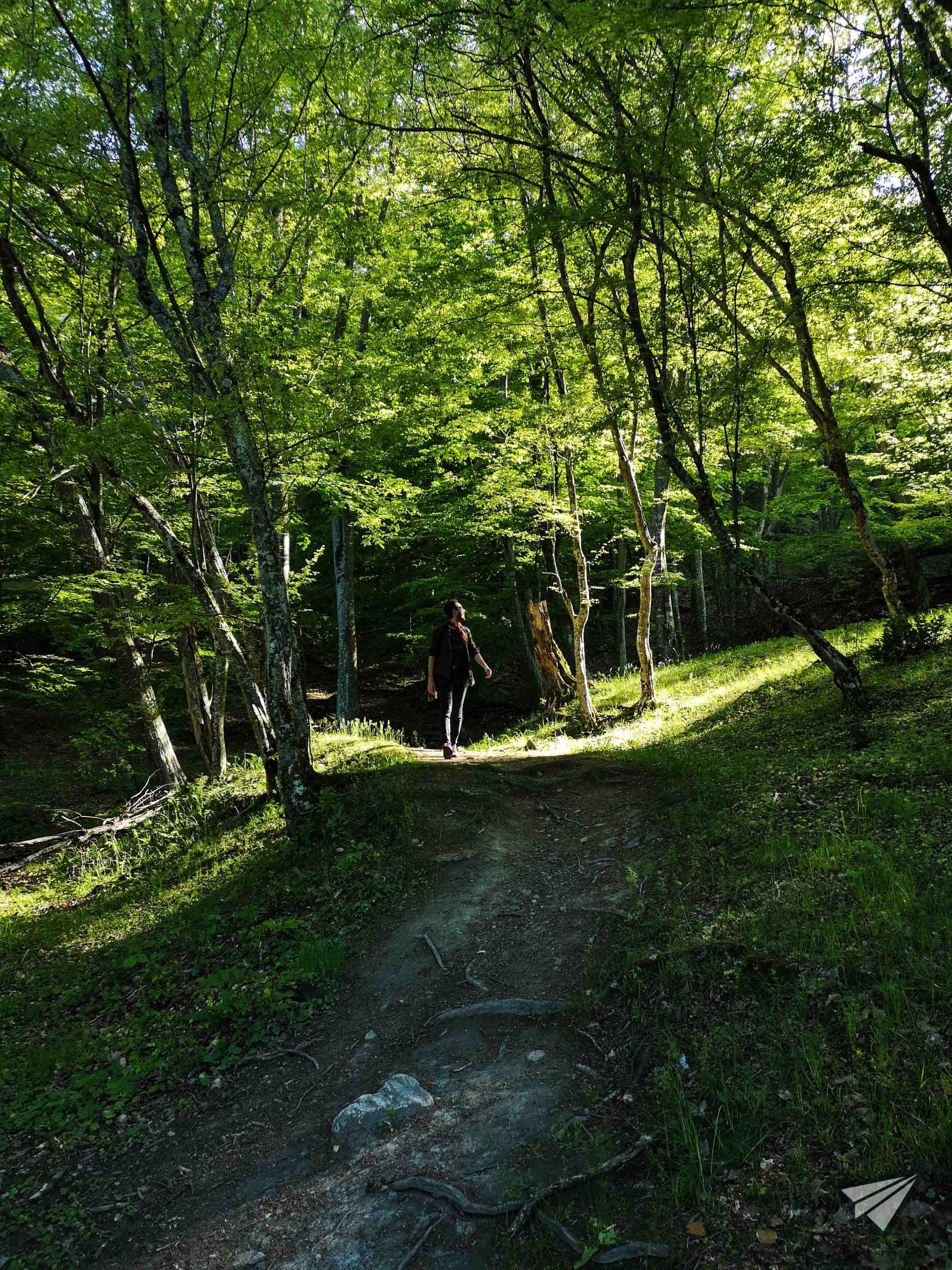 """екопътека """"Бяла река"""" разходка"""